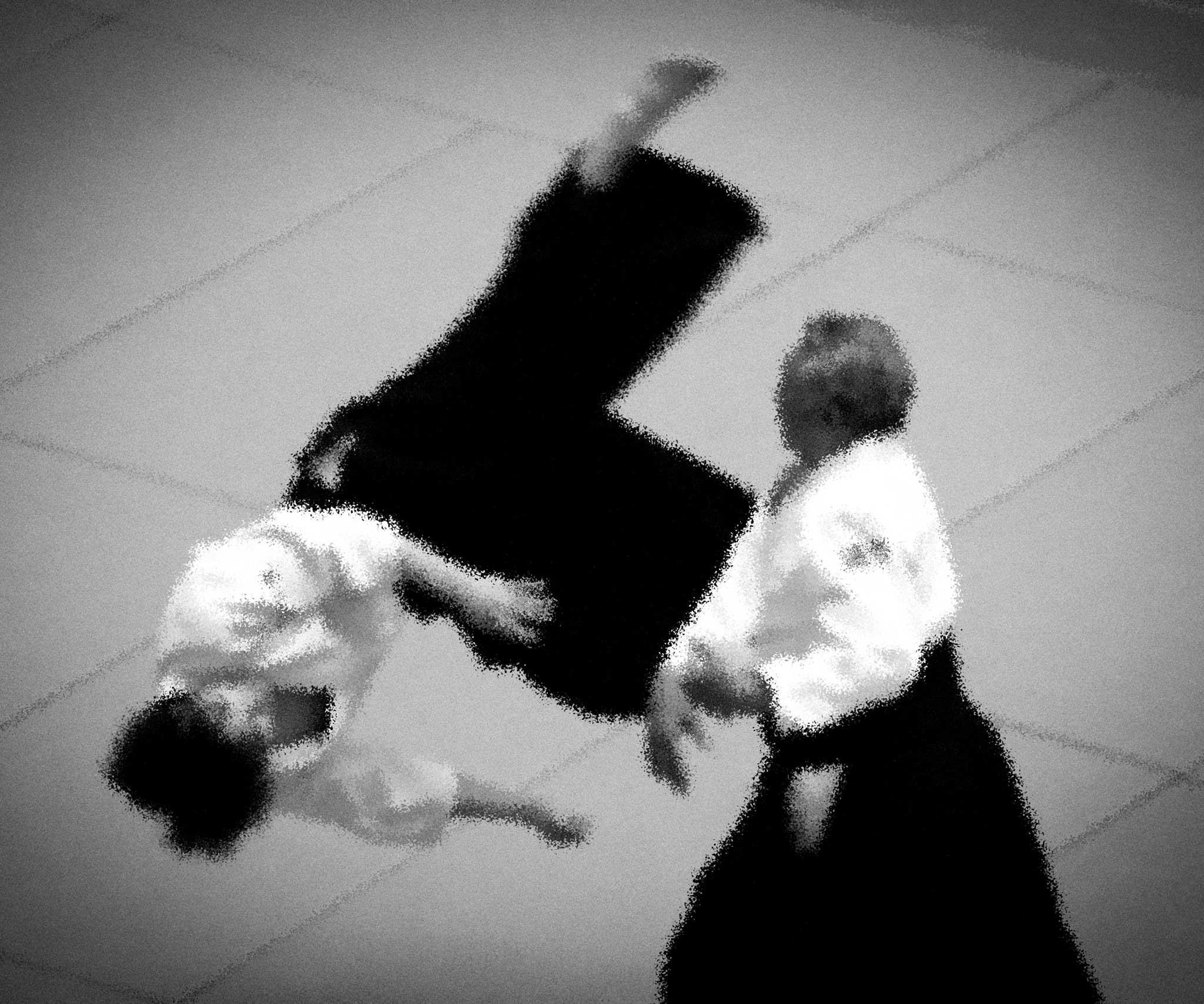 Watahiki-Sensei, 7th Dan, du Dōjō de la branche d'Ibaraki à la 51ᵉ Japan Aikido Demonstration