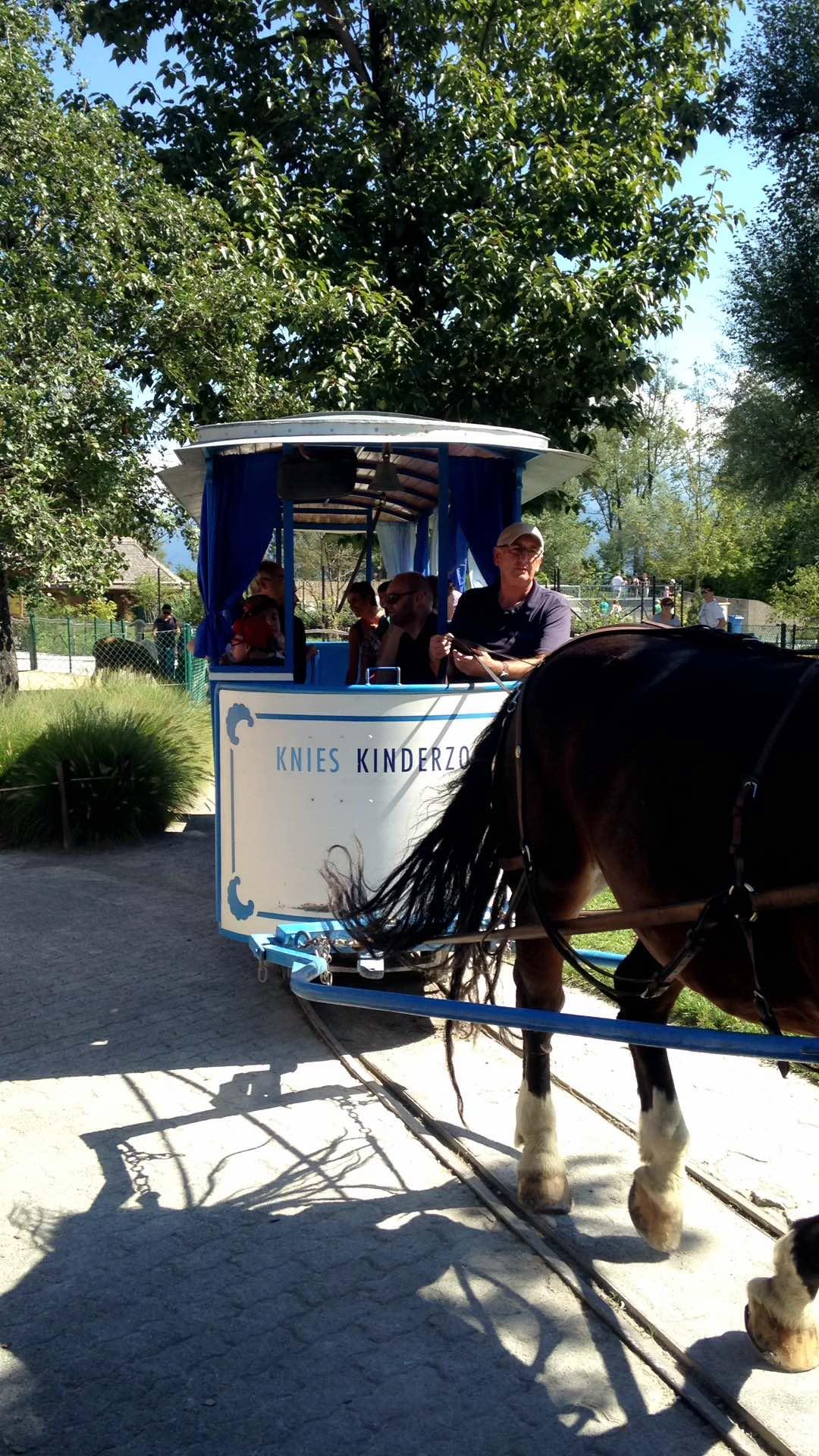 Un Tramway a voie étroite tracté par un cheval