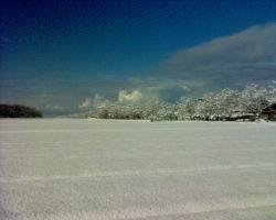 Rizières sous la Neige