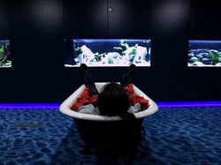 Me, in a bath-tub full of red foam cubes, in front of an aquarium, in a blue room