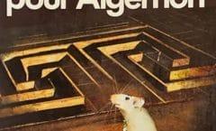 Librairies des années 80…