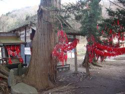 Guirlandes Tōnō