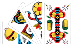 Swiss Cards