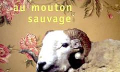 La course au mouton sauvage