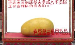 Les mangues de Mao