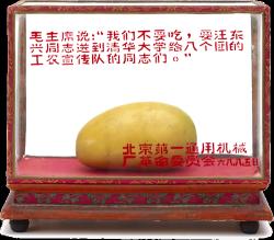 Mangue de Mao dans un reliquaire