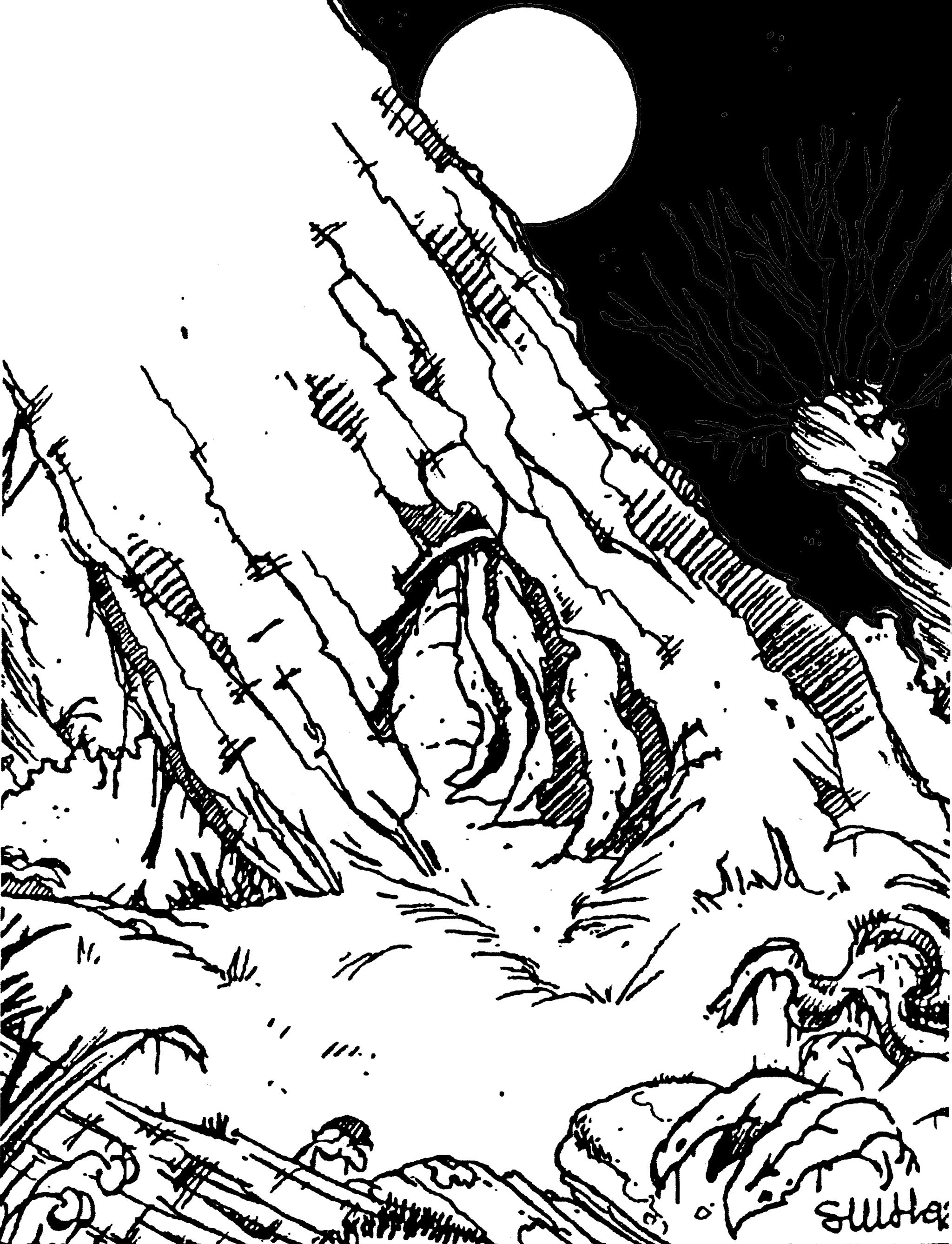 Vue d'une forêt avec en fond la Lune