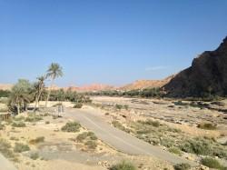 Une route abandonnée dans le lit d'une rivière avec au fond une palmeraie