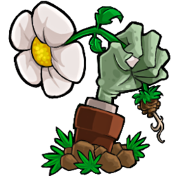 Plants vs. Zombies game icon – ⓒ 2009 PopGames Inc.
