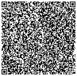 recursive_barcode