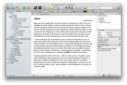Capture d'écran de la vue texte de Srivener avec la hiérarchie de fichiers