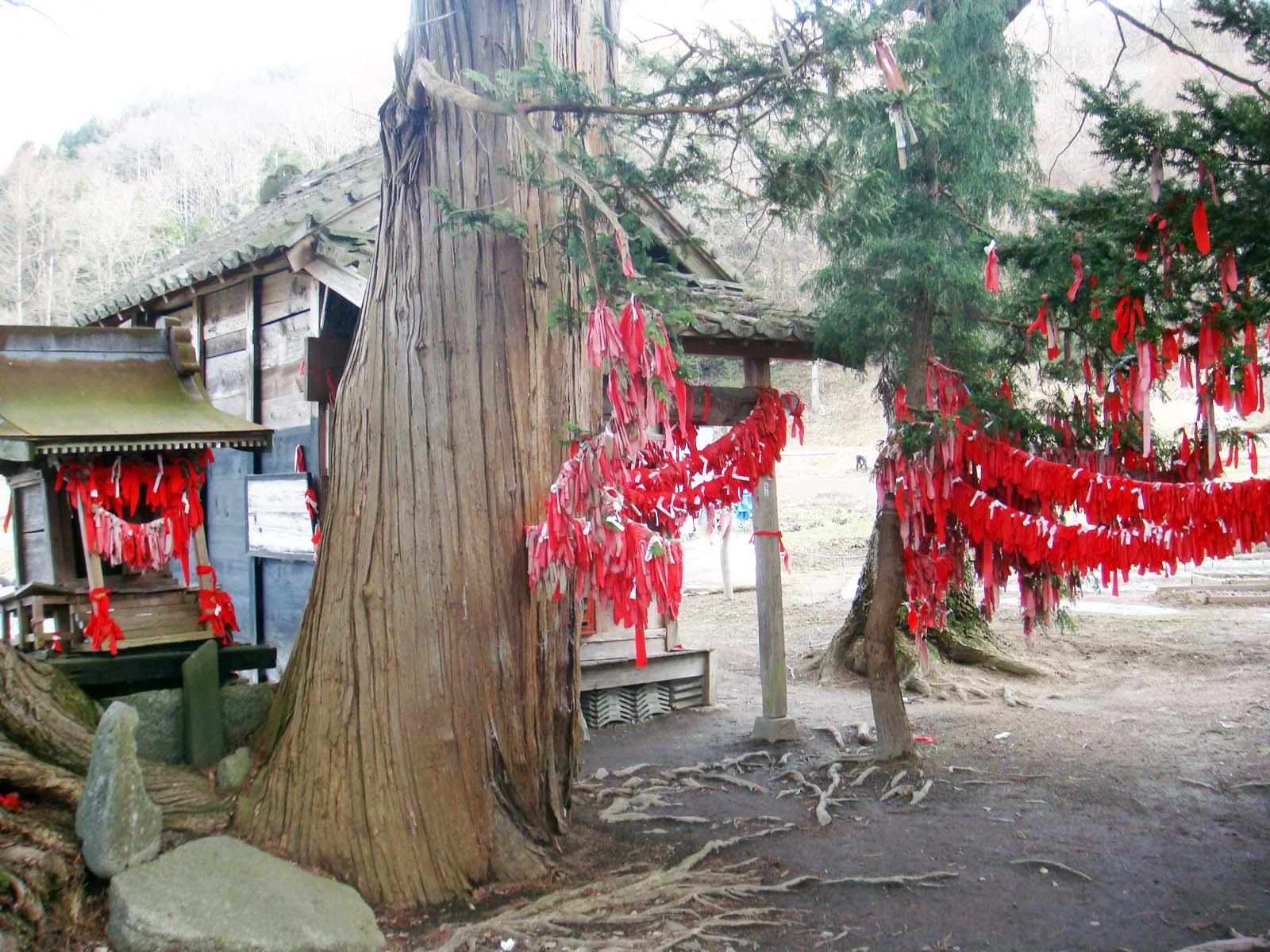 Temple Tōno umedori-sama